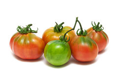 Tomatoes closeup isolated on white background Royalty Free Stock Photography