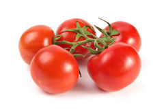 Tomatoes cluster Royalty Free Stock Images