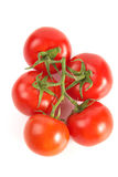 Tomatoes cluster Royalty Free Stock Image