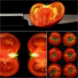 Tomatoes collage Royalty Free Stock Photo