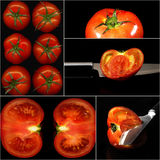 Tomatoes collage Stock Photo