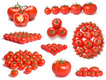 Tomatoes collection Royalty Free Stock Photos