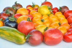 Tomatoes collection of varieties Royalty Free Stock Photography