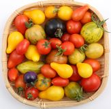 Tomatoes. Stock Photo