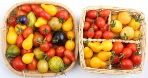 Tomatoes. Royalty Free Stock Images