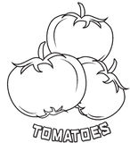 Tomatoes coloring page Royalty Free Stock Photo