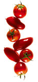 Tomatoes composing Royalty Free Stock Photography
