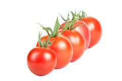 Tomatoes constructed in a row isolated on white background Stock Photo