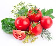 Tomatoes, cooked with herbs Stock Photo