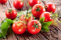 Tomatoes, cooked with herbs for the preservation Royalty Free Stock Image