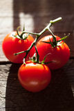 Tomatoes, cooked with herbs for the preservation Royalty Free Stock Images