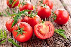 Free Tomatoes, Cooked With Herbs For The Preservation Royalty Free Stock Image - 31845966