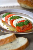 Tomatoes and cottage cheese Royalty Free Stock Images