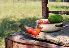 Tomatoes and cucumber in the bowl on old chair. Photo of tomatoes and cucumber in the bowl on old chair stock photos