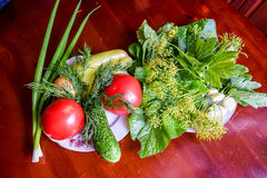 Tomatoes, cucumber, green onions, garlic, peppers and herbs. Still life of various vegetables Royalty Free Stock Photos