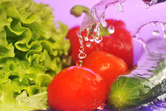 Tomatoes, cucumber and splashes Royalty Free Stock Photography