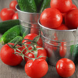 Tomatoes and cucumbers in buckets Royalty Free Stock Images
