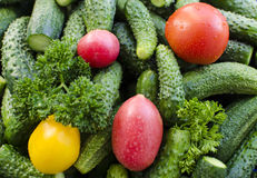Tomatoes cucumbers Royalty Free Stock Photo
