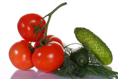 Tomatoes, cucumbers and greens Royalty Free Stock Image