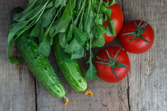 Tomatoes and cucumbers with greens on an old wooden background.  Stock Photos