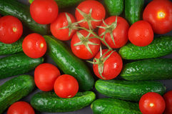 Tomatoes and cucumbers. Heap of whole wet tomatoes and cucumbers. Top view point, full frame Royalty Free Stock Photography