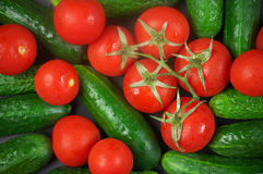 Tomatoes and cucumbers Royalty Free Stock Images