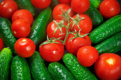 Tomatoes and cucumbers. Heap of whole wet tomatoes and cucumbers. Top view point, full frame Stock Photography