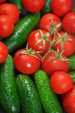 Tomatoes and cucumbers. Heap of whole wet tomatoes and cucumbers. Top view point, full frame Royalty Free Stock Image