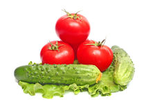 Tomatoes and cucumbers on  lettuce Stock Image