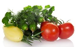 Tomatoes, cucumbers, pepper, parsley, dill and the Royalty Free Stock Images
