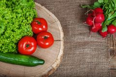 Tomatoes, cucumbers, radishes and lettuce. Copy space.The concep. Tomatoes, cucumbers, radishes and lettuce. Copy space. The concept of healthy eating and Stock Photography