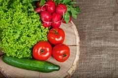 Tomatoes, cucumbers, radishes and lettuce. Top view. The concept. Of healthy eating and vegetarianism Stock Photos
