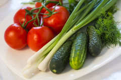 Tomatoes, cucumbers and spring onions Royalty Free Stock Photography