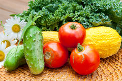 Tomatoes, cucumbers, squash and kale cabbage stems from local  g Royalty Free Stock Photo