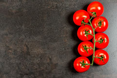Tomatoes on dark copy space Stock Images