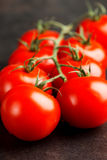 Tomatoes on dark Stock Image