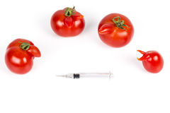 Tomatoes with deformation and defects on white background, with syringe. Tomatoes with deformation and defects, with syringe. Chemical treatment for rapid Royalty Free Stock Images