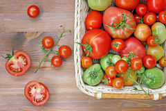 Tomatoes of different degree of a maturity on a table in a baske Stock Images