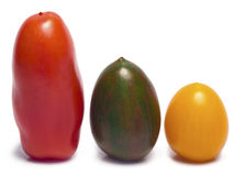 Tomatoes of different grades and color Stock Images