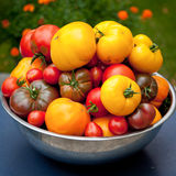 Tomatoes. Different types of freshly picked tomatoes Stock Photography