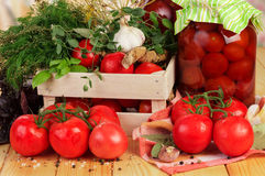 Tomatoes and dill in crate Stock Images