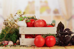 Tomatoes and dill in crate Stock Photos