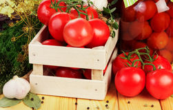 Tomatoes and dill in crate Stock Photography