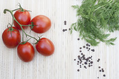 Tomatoes with dill. Dranch tomatoes with dill, wooden table royalty free stock photography