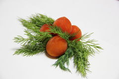 Tomatoes with dill. Frozen cherry tomato with dill on a plate Royalty Free Stock Image