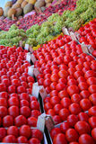 Tomatoes on display at bazaar Stock Images