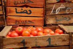 Tomatoes. A display of fresh tomatoes at the a local market in Rabat, Morocco Royalty Free Stock Photos