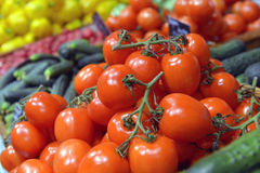 Tomatoes on display Royalty Free Stock Image