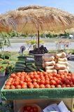 Tomatoes displayed for sale Royalty Free Stock Photography