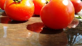 Tomatoes falls drip falls water flies healthy plant summer natural vegetable slow-motion turns. Tomatoes drip water   slow-motion summer    vegetable natural stock footage